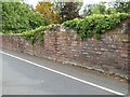 NY4153 : Garden wall, Lady Gillford's House by Adrian Taylor