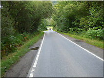 NR9982 : The A8003 road by Thomas Nugent
