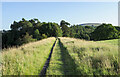 NY6753 : Footpath along old railway embankment by Trevor Littlewood