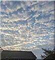 TF0820 : The morning sky by Bob Harvey