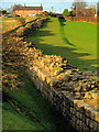 NZ1366 : Hadrian's Wall east of Heddon on the Wall by Andrew Curtis