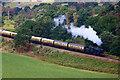 SO8074 : Severn Valley Railway - heading for Kidderminster by Chris Allen