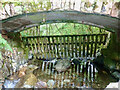 NY2101 : Heck under Jubilee Bridge by Mick Garratt