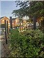 TF0820 : Fencehenge by Bob Harvey