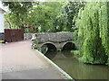 SZ1692 : Bridge over a mill stream, Christchurch by Malc McDonald
