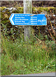 NS0274 : Bute Cycle Network sign by Thomas Nugent