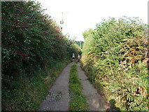 SK1507 : On Sandy Lane, west of Brewery Farm by Richard Law