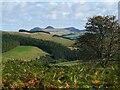 NT4329 : Eildon Hills from near Tibbie Tamson's grave by Jim Barton