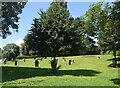 SJ2207 : Replica stone circle by Bill Harrison