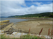 NR9384 : The shore at Otter Ferry by Thomas Nugent