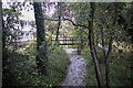 SE3628 : The stream in the garden by Bob Harvey
