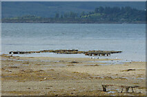NR9283 : Ballimore Oyster Farm by Thomas Nugent