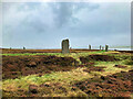 HY2913 : Heart of Neolithic Orkney - Standing Stones at The Circle of Brodgar by David Dixon