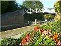 SP3684 : Roving bridge at Hawkesbury Junction, Oxford Canal by Alan Murray-Rust