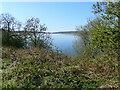 SK2551 : A peek at Carsington Water by Eirian Evans