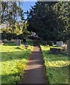SO3402 : NE side of the churchyard, Monkswood by Jaggery