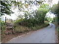 TQ6559 : Steps from Woodgate Road, near Addington by Malc McDonald