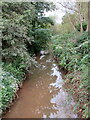 SP0379 : The River Rea from Popes Lane bridge by Roy Hughes