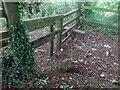 SO9215 : Boundary Stone, Peak Plantation, Birdlip by Mr Red