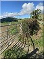 SJ1327 : View towards Mynydd Mawr by Alan Hughes