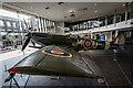 SJ8847 : Spitfire RW388 New Display, Hanley by Brian Deegan