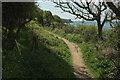 SX6147 : Coast path above the Erme estuary by Derek Harper