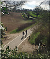 SP2874 : Hollis Lane from the Kenilworth Greenway by Robin Stott