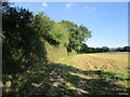 SO7442 : Footpath near Colwall by Jonathan Thacker
