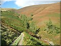 NY2825 : The Cumbria Way above Whit Beck by Adrian Taylor