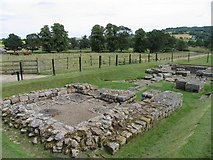 NY9170 : Chesters (Cilurnum) Roman Fort by Pam Brophy