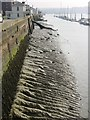 TQ7569 : Low tide by Chatham Historic Dockyard by Penny Mayes
