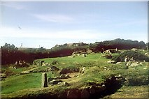 SW4028 : Carn Euny Iron Age Village by Penny Mayes