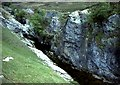 NC2720 : Traligill River by Anne Burgess