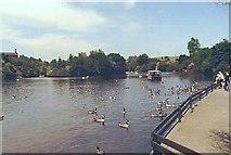 SJ9599 : Stamford Park Boating Lake by Martin Clark