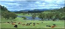 NN6795 : Lochan Uvie by Anne Burgess
