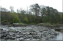 NY9028 : River Tees by Ben Gamble