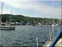 NR8668 : Tarbert, Loch Fyne by phil smith