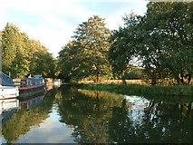 SU9946 : Wey and Arun Canal by Stephen Dawson