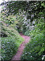 SP0256 : Public Bridleway towards Cladswell and Knowle Fields. by Richard  Dunn
