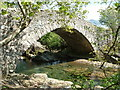 NY1800 : Doctor Bridge by Malcolm Jones