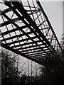 O0835 : Disused Bridge over the River Liffey by Warren Buckley