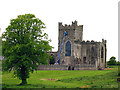 S7910 : Tintern Abbey (Ireland) by Pam Brophy