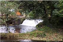 ST3000 : Weir above Weycroft Mill by Andy Phillips