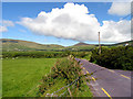 Q3600 : Country Road on the Dingle Peninsula by Pam Brophy