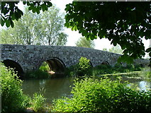 ST9102 : The Packhorse Bridge at Spetisbury Dorset by Chris Hayles