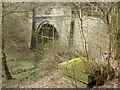 SP5356 : Catesby Tunnel (South Portal) by David Griffiths