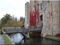 TQ4745 : Hever Castle by Chris Shaw