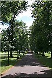 SU4212 : East Park by David Mainwood