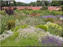 SO4465 : Herbaceous Bed in Walled Garden by Kokai