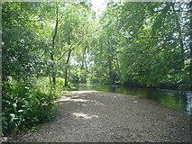 TQ0481 : River Colne (Iver/Cowley borders) by John Chisholm